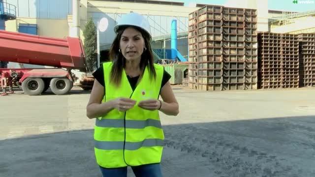 Euskaltzale: Sozioekonomia eta euskara