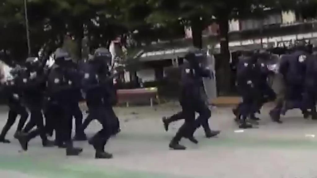 Polizia eredu eta armen erabilera, eztabaidaren abiapuntua