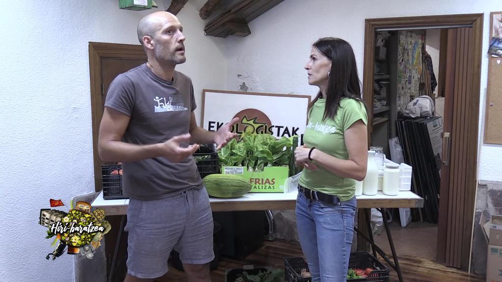 Hiri Baratzea: Erremolatxa landatu, tomatea kimatu, kontsumo taldea eta denboraldiko loreen arteko desberdintasuna.