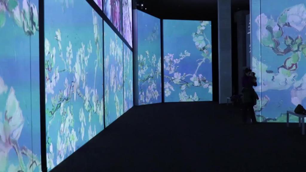 Iñaki Ziarrusta, Gertrude Noise Meeting, Van Gogh Alive eta Macho man erakusketak