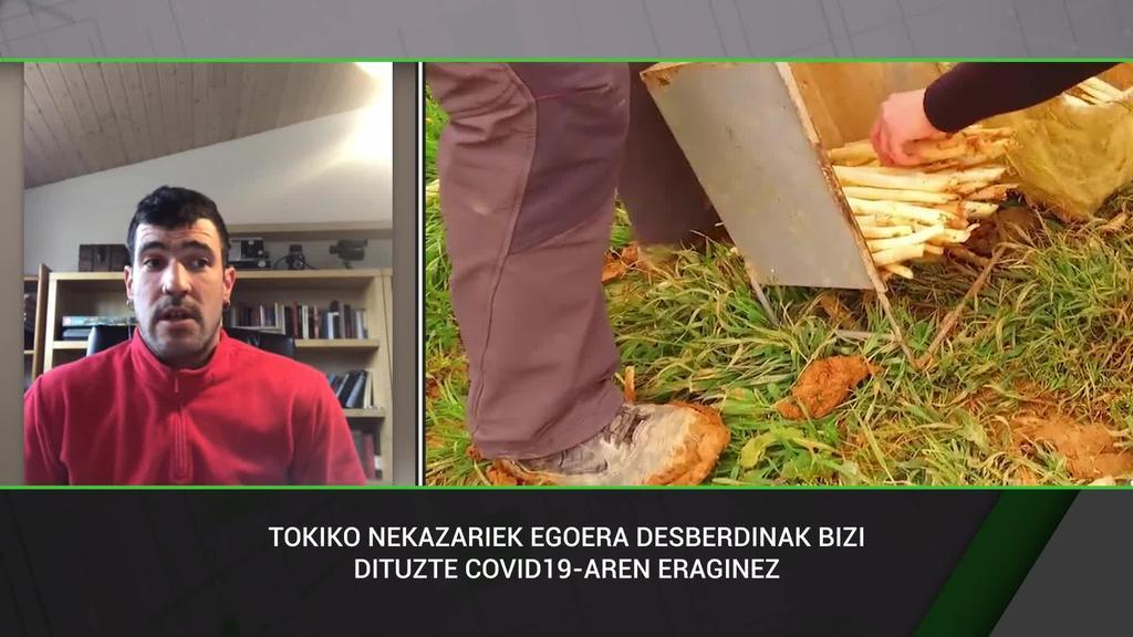 Borja Etxeberria (UztaldiBIOK):
